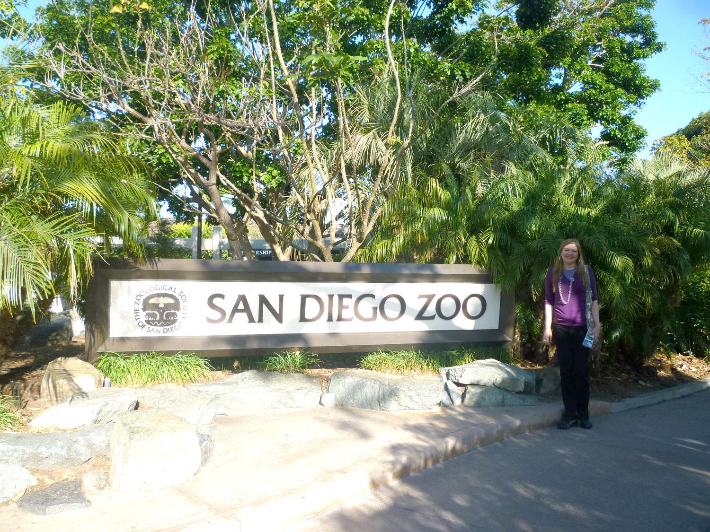 O Zoológico de San Diego é um dos melhores do mundo. Pegue um ônibus interno do zoo para conhecer seus 4 mil animais. O trajeto dura um pouco mais que meia hora e as explicações são em inglês. Ou opte por observar os animais prediletos a pé, assim dá para vê-los de perto. O maior zoo do mundo fica em San Diego, conta com mais de 4 mil animais e vários deles são raros e exóticos. Além de explorar o lugar a pé, você também tem a opção de pegar um teleférico Skyfari ou um ônibus de dois andares que circula pelo local. A principal atração do zoo é o panda gigante Mei Sheng. No local, você também se impressionará com as aéreas climatizadas que foram criadas para abrigar os macacos, hipopótamos, tigres e para o urso polar.